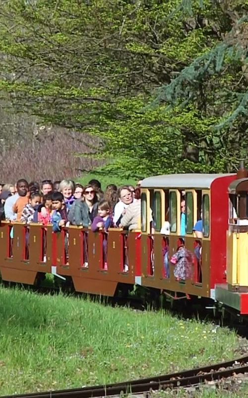 train touristique anse