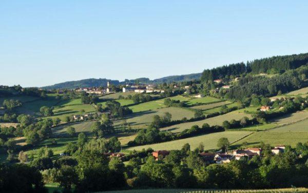 Propières Beaujolais vert principale
