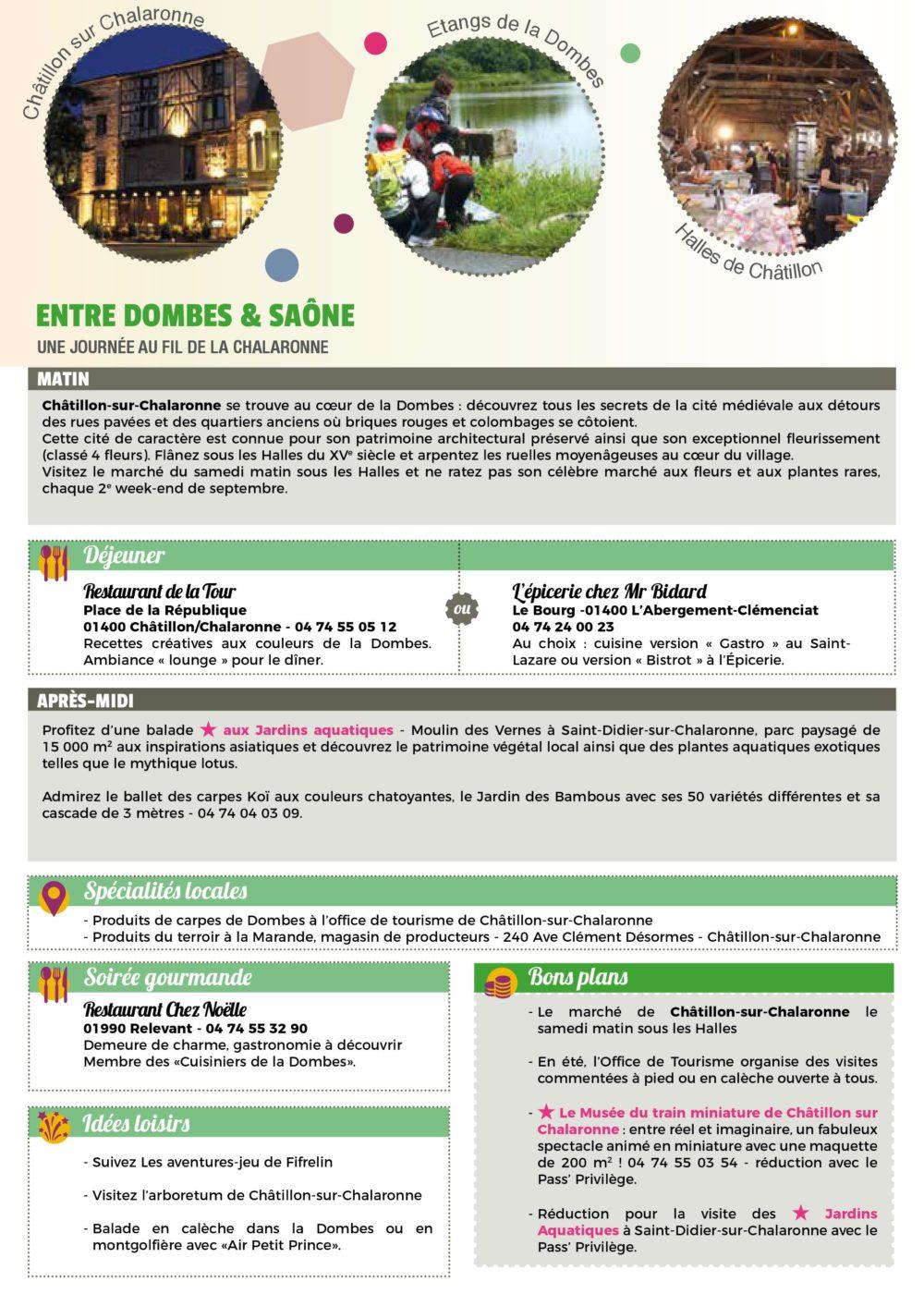 carnet de voyage 2019 - saone - page 3 entre saone et dombes