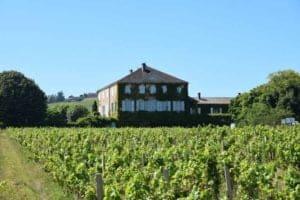 chateau bachelars principale vins et restau