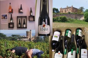 chateaudemontmelas-groupe-visite vin-1