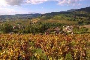 domainedesfrontieres-groupe-visite-1