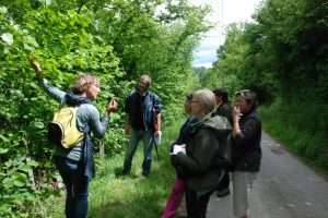 rivierbuffiereplantessauvages-groupe-visite-1